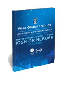 Wise Global Training eLearning Courses